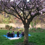9 people sitting on a tarpaulin under a cherry blossom tree in Christ Church Memorial gardens with a man and child walking towards them and a row of gravestones leaning against the back wall of the gardens