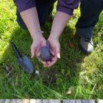 Rachel dug up the plastic watch