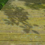 leaf shadows and lines drawn on the decking in blue and white
