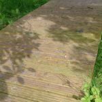 blue and white lines drawn around leaf shadows on the decking